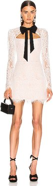 Lace Corset Mini Dress with Bow in White