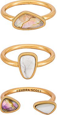 Ivy Ring Set Of 3 in Metallic Gold. - size 6 (also in 7)