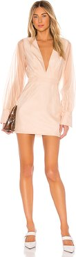 The Penelope Mini Dress in Pink. - size S (also in M)