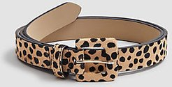 Spotted Haircalf Belt