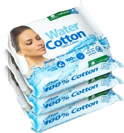 EcoWipes 25-count Micellar Water Makeup Removal Wipes