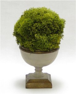 Reindeer Moss Topiary Ball in Small Wooden Footed Bowl