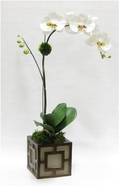 Artificial Orchid in Mini Wooden Square Container
