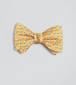 Sail And Dolphin Bow Tie