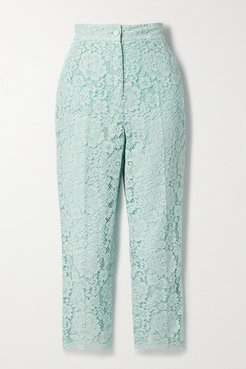 Cotton-blend Corded Lace Tapered Pants - Sky blue