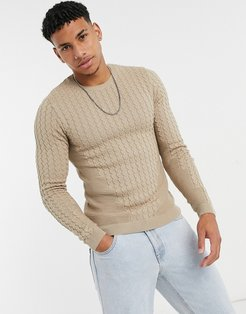 muscle fit lightweight cable sweater in oatmeal-Beige