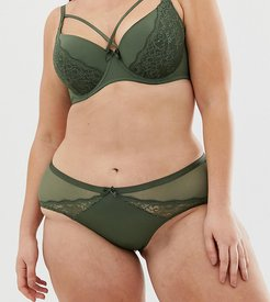 Plus Size Blair lace hipster brief in khaki-Green