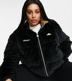 PLUS velour cropped puffer in black