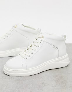 pippa leather high top sneakers in cream