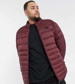 Essentials plus size padded jacket in red