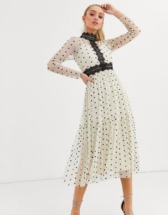 long sleeve polka dot midi dress with lace inserts in cream and black-Multi