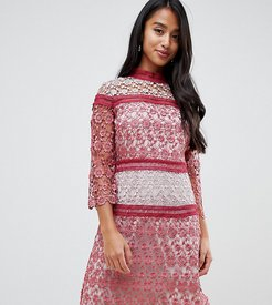 contrast lace mini shift dress in berry-Red