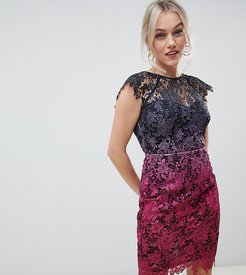 midi lace dress with scalloped back in ombre metallic lace-Multi