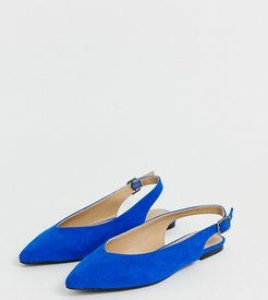 Lana pointed flat shoes in cobalt blue-Blues
