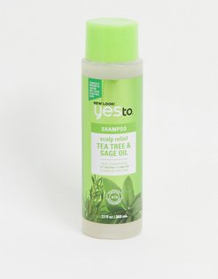 Tea Tree & Sage Oil Scalp Relief Shampoo-No Color