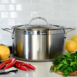 ProBond 8 Quart Forged Stainless Steel Stock Pot with Lid