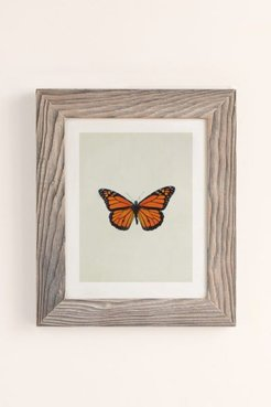 The Queen Butterfly Art Print - Grey at Urban Outfitters