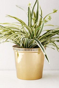 """Punched Metal 10"""" Planter - Gold at Urban Outfitters"""