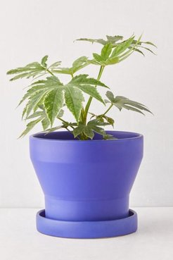 """Malakai 10"""" Planter - Blue at Urban Outfitters"""