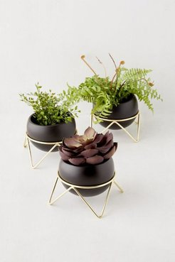 Potsy Planter - Set Of 3 - Black L at Urban Outfitters