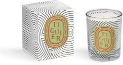 Figuiers candle 70g - Dancing Ovals Collection