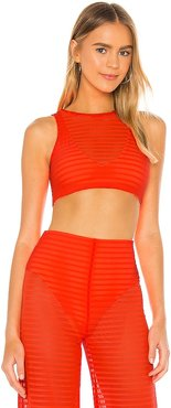 Vita Crop Top in Orange. - size L (also in M, S, XL, XS)