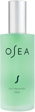Sea Minerals Mist in Beauty: NA.