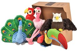 13 x 15.7 x 3.9 Fetching Flock - B2C Five-Piece Set with Gift Box (Varied) Dog Toys