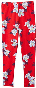 Healy Print Leggings with Elastic Waist (High Risk Red/Multi) Women's Casual Pants
