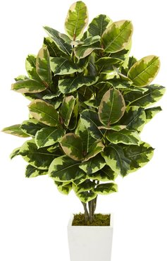 NEARLY NATURAL Variegated Rubber Leaf Artificial Plant in White Tower Vase at Nordstrom Rack