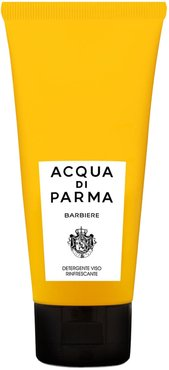 Barbiere Refreshing Face Wash, Size - 3.4 oz