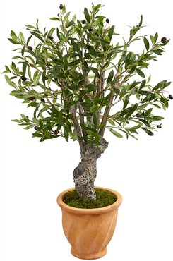 NEARLY NATURAL Green 3ft. Olive Artificial Tree in Terracotta Planter at Nordstrom Rack