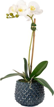 Pearl Orchid Planter Decoration