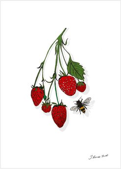 """The Strawberry Vine"" Signed Print"