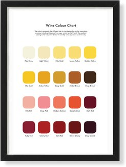 Wine Tasting Colour Chart