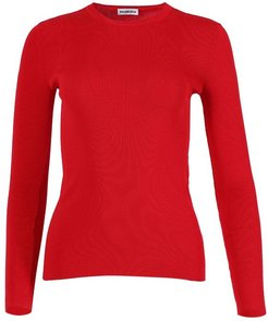 Fitted Crewneck Knit Sweater