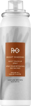 Bright Shadows Root Touch Up Spray Medium Brown