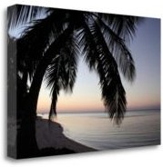 """Palm Tree Sunset by Brent Anderson Fine Art Giclee Print on Gallery Wrap Canvas, 40"""" x 26"""""""