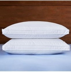 Gusset Pillow with Pillow Protectors Standard/Queen Set of 2