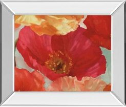 """Incandescence Ii by Pahl Mirror Framed Print Wall Art, 22"""" x 26"""""""