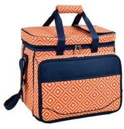 Picnic Cooler for Four, Divided Interior -Leak Proof Lining