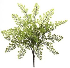 "15"" Maiden Hair Artificial Plant, Set of 12"
