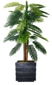 """64"""" Real Touch Palm Tree in Fiberstone Planter"""