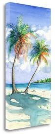 """Palm Shadows by Christine Reichow Giclee Print on Gallery Wrap Canvas, 20"""" x 40"""""""