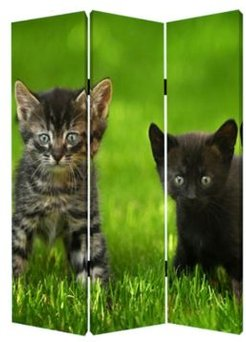 Double sided with different Design 3 Panel 6' Curious Cat Screen