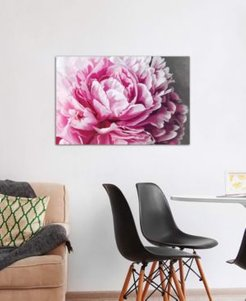 """Peony Blush"" by 5by5collective Gallery-Wrapped Canvas Print (26 x 40 x 0.75)"