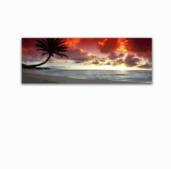 Colossal Images Sunset Palm Canvas Art, 18 x 58
