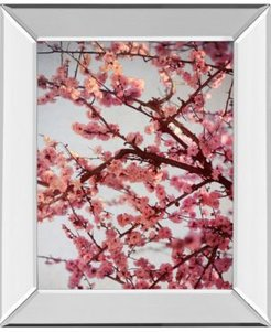 """Cherry Blossoms Ii by Susan Bryant Mirror Framed Print Wall Art, 22"""" x 26"""""""
