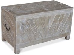 Bengal Storage Cocktail Table