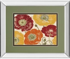 """A Poppy's Touch I Spice by Daphne Brissonnet Mirror Framed Print Wall Art, 34"""" x 40"""""""
